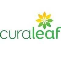 Curaleaf Marijuana Dispensary featured image