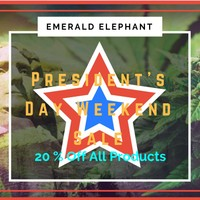 Emerald Elephant Marijuana Dispensary featured image