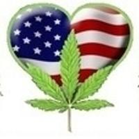 The Humboldt Connection Marijuana Dispensary featured image