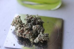 OGKB Marijuana Strain product image