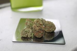 Sensi Star Marijuana Strain product image