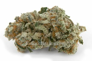 Berry White Marijuana Strain product image