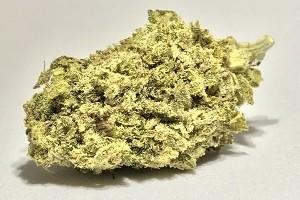 Bio-Diesel (Platinum Grade) image
