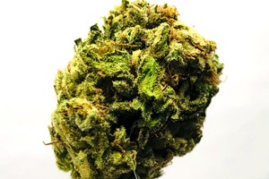 Blueberry Cookies image