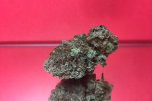 Bruce Banner Marijuana Strain product image