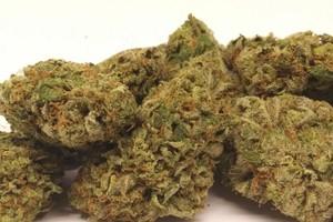 Bubba Kush Marijuana Strain product image