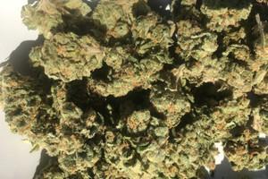 Pre-98 Bubba Kush Marijuana Strain product image