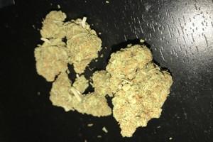 Candy Jack Marijuana Strain product image