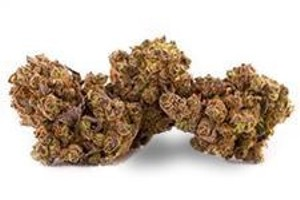 Cannalope Haze Marijuana Strain product image