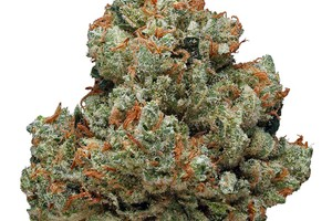 Chemdawg image