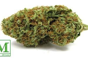 Cherry AK-47 Marijuana Strain product image