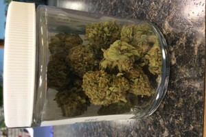 God Bud Marijuana Strain product image