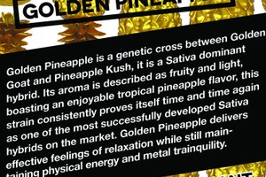 Golden Pineapple image