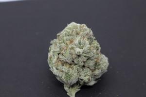 Gorilla Glue #4 Marijuana Strain product image