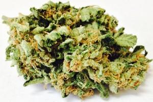 Blueberry Grape Ape Marijuana Strain product image