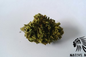Grape Stomper Marijuana Strain product image
