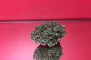 Island Sweet Skunk Marijuana Strain product image