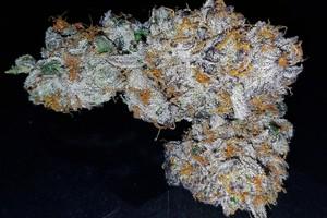 Mendo Breath Marijuana Strain product image