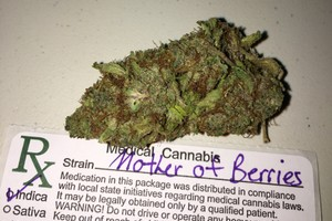 Mother of Berries Marijuana Strain product image