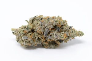Orange Cookies Marijuana Strain product image