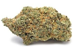Sunset Sherbet Marijuana Strain product image