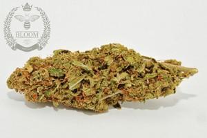 Skunk #1 Marijuana Strain product image