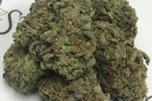 Super Sour Diesel Marijuana Strain product image