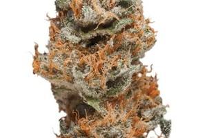 taffie Marijuana Strain product image