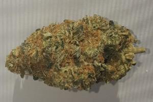 THC Bomb Marijuana Strain product image