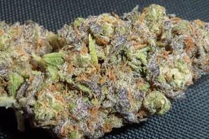 Trainwreck Marijuana Strain product image