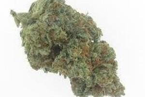Triangle Kush | Marijuana Strain Reviews | AllBud