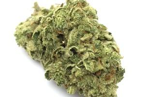 #1 Marijuana Strain product image