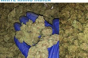 Venom OG Marijuana Strain product image