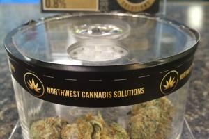 The Pot Zone Marijuana Dispensary image