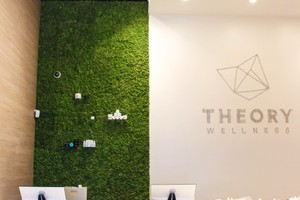 Theory Wellness Marijuana Dispensary image