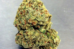 3 Kings Marijuana Strain image