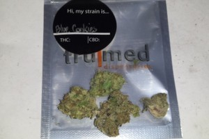 Blue Cookies Marijuana Strain image