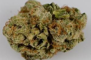 Brain OG Marijuana Strain image