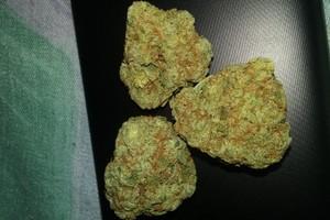 Chemdawg Marijuana Strain image