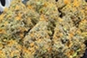 Cherry Cookies Marijuana Strain image
