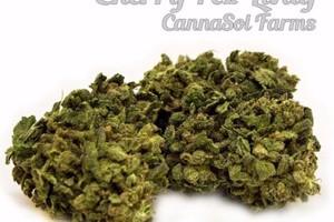 Cherry Pez Livity Marijuana Strain image