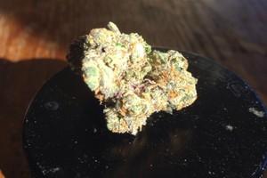 Chunky Diesel Marijuana Strain image