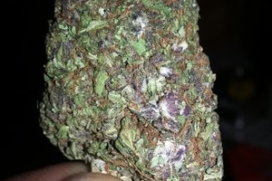 Durban Poison Marijuana Strain image
