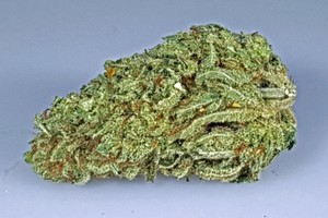 Golden Lemons Marijuana Strain image