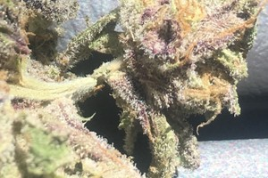 Grape Ape Marijuana Strain image