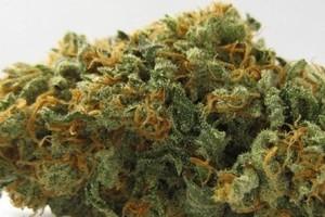 Kushage Marijuana Strain image
