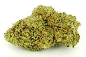 Papaya Marijuana Strain image