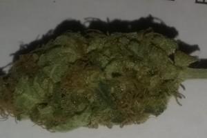 Pineapple Chunk Marijuana Strain image