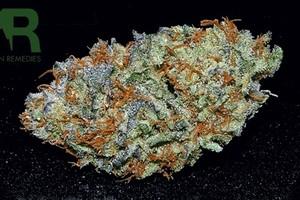 Pre-98 Bubba Kush Marijuana Strain image