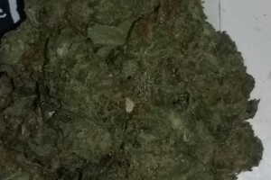 Presidential Kush Marijuana Strain image